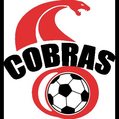 Club Cobras de Cd. Juárez