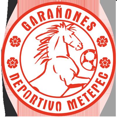 Club Deportivo Metepec