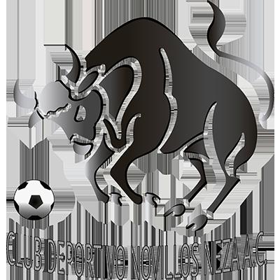 Club Novillos Neza