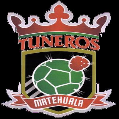 Club Tuneros de Matehuala