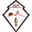 Mineros de Fresnillo F.C.