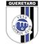 Gallos Blancos de Querétaro