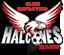 Deportivo Halcones de Rayón