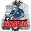 Club Deportivo Villa Flor