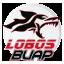 Lobos BUAP Premier