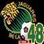 Jaguares de la 48