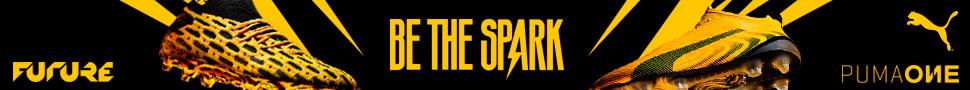 Banner Puma Spark