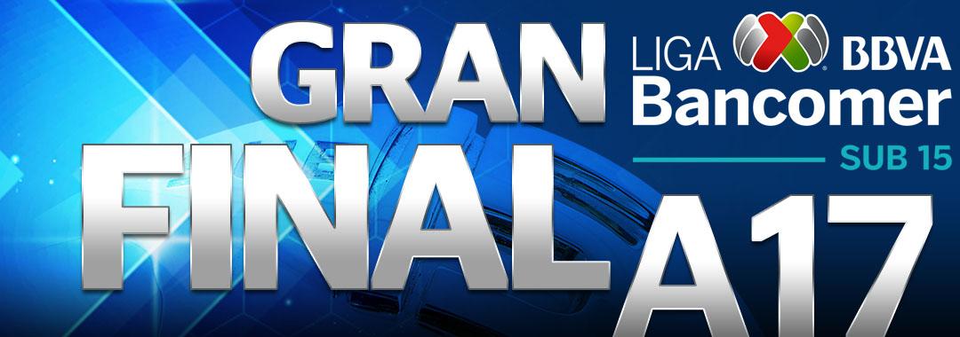 Fechas y Horarios de la Gran Final