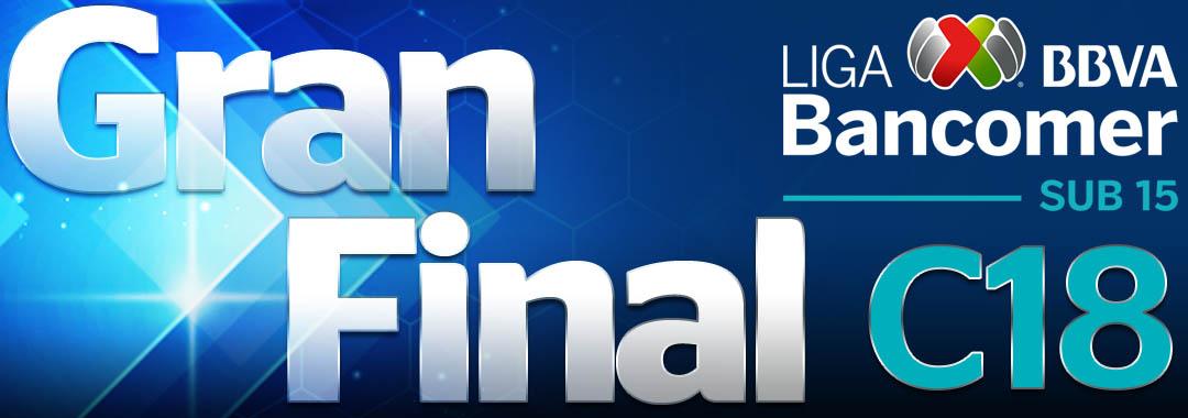 Fecha y Horario de la Gran Final del Clausura 2018