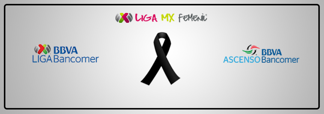 Img Noticia LigaMx