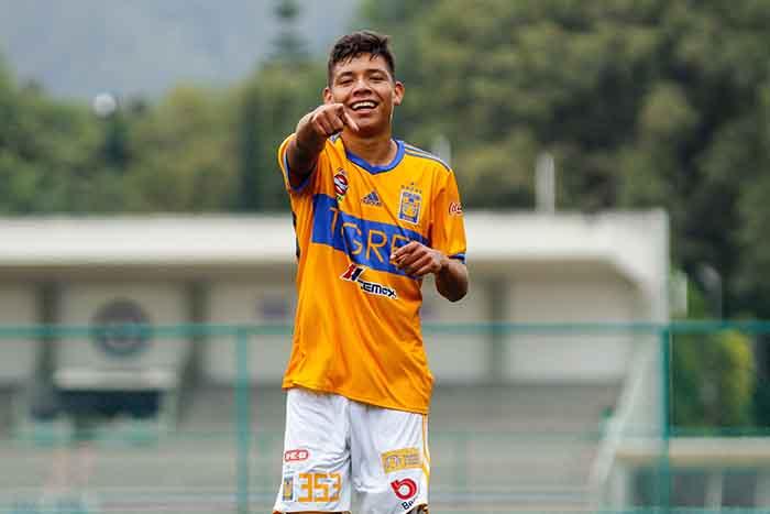 Sub 17 - Página Oficial de la Liga del Fútbol Profesional en México .   Bienvenido - 26429 - sub17.ligamx.net 4b2cf3a24af55