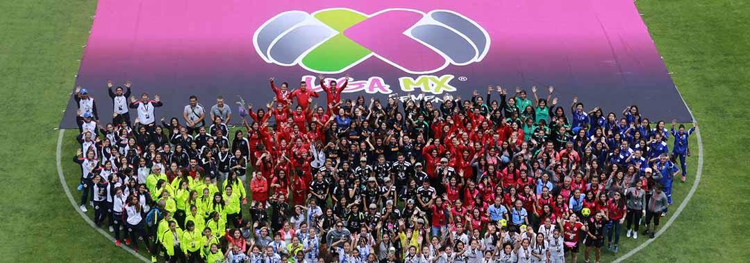 Resultado de imagen para Sin fecha de regreso Liga MX, formarán una nueva Liga para este año.