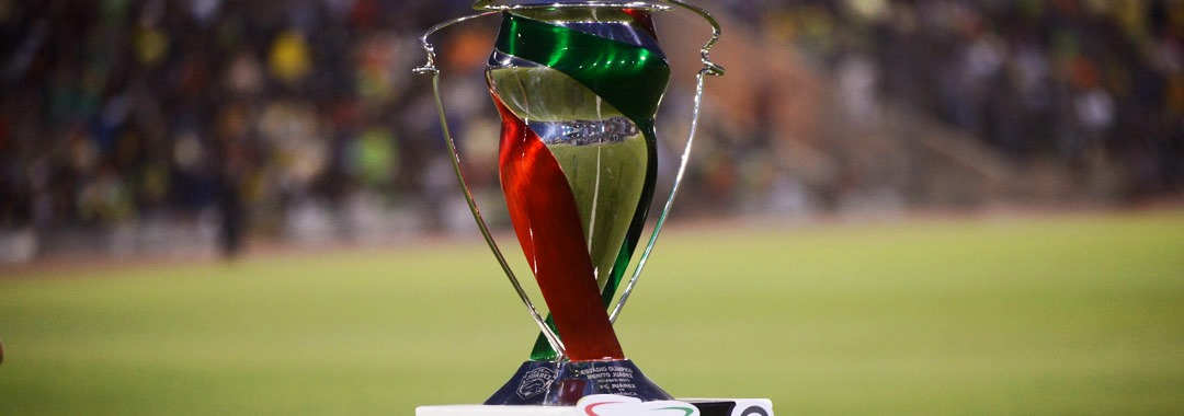 Asistencia Total de la Fase de Grupos Copa MX