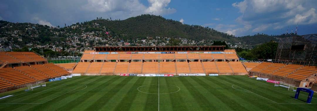 Estadio Tecnológico de Oaxaca, Fortaleza de Alebrijes