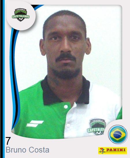Bruno Tiago Costa Araujo