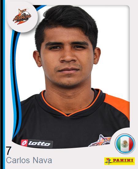 Carlos Iván Nava Ramírez