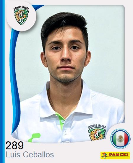 Luis Mario Ceballos Sánchez