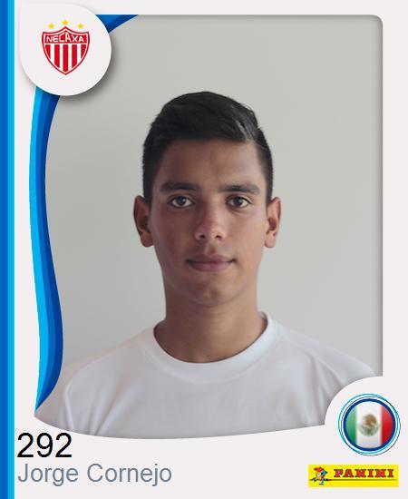 Jorge Luis Cornejo Tayahua