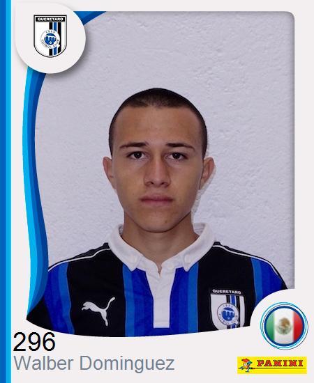 Walber Mauricio Dominguez Dominguez