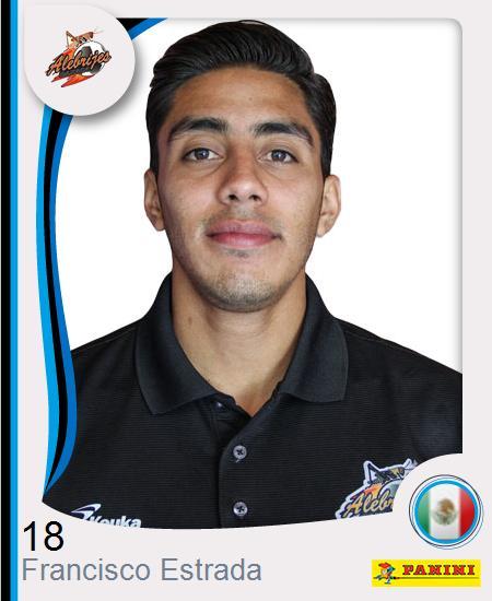 Francisco Javier  Estrada Aguirre