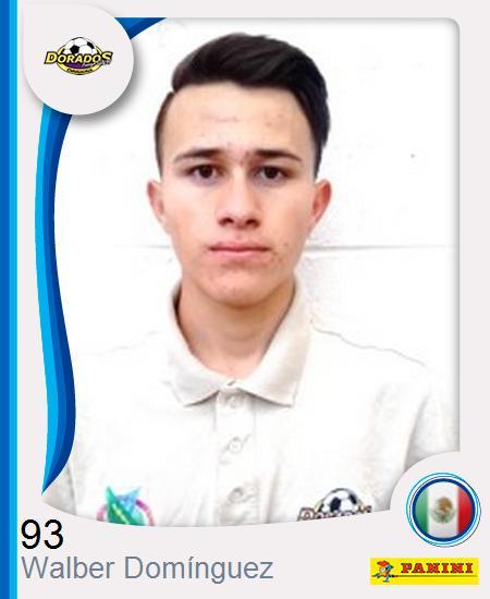 Walber Mauricio Domínguez Domínguez
