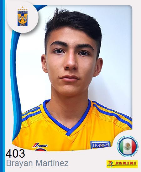 Brayan Gabriel Martínez Camarillo