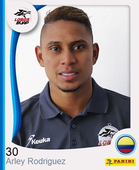 Arley Jose Rodriguez Henry