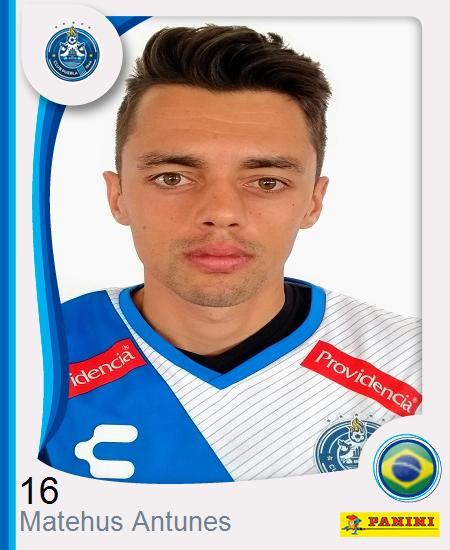 Matheus Antunes Ribeiro