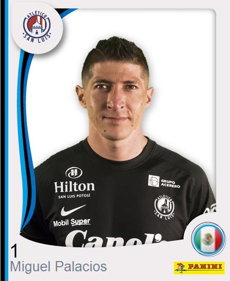 Miguel Alejandro Palacios Redorta