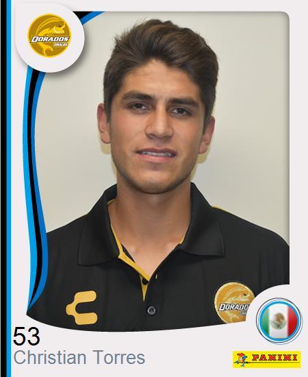 Christian David Torres Roldán