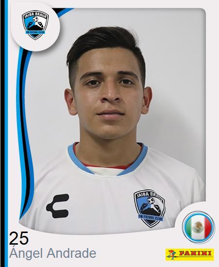 Ángel Saúl Andrade González