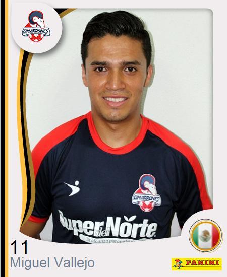 Miguel Ángel Vallejo Navarro
