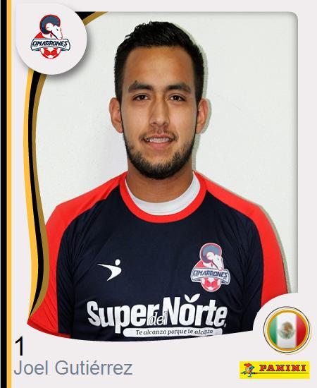 Joel Gutiérrez Martínez