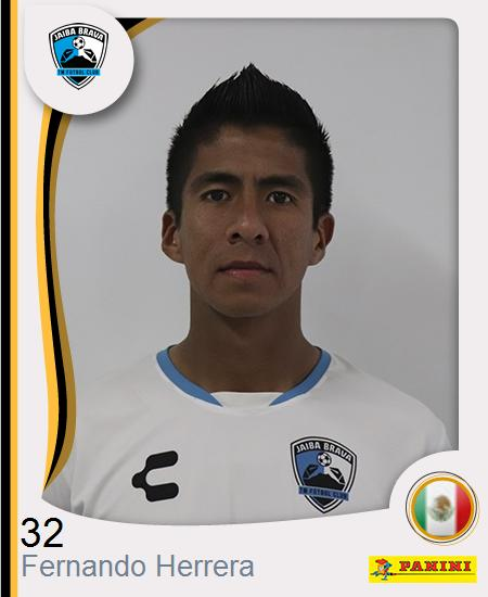Fernando Herrera Espinoza