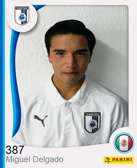 Miguel Ángel Delgado Garza