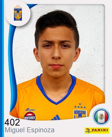 Miguel Ángel Espinoza Alvarado