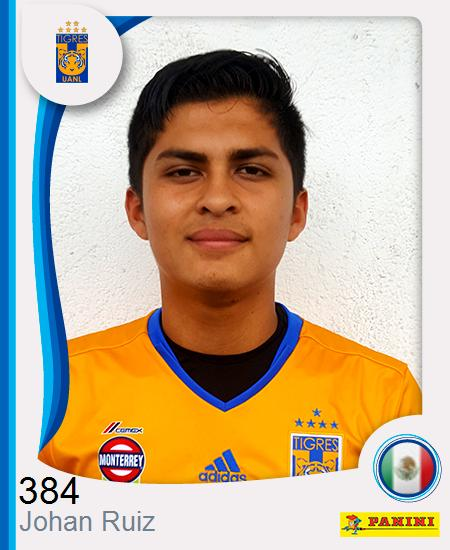 Johan Fernando Ruiz Torres