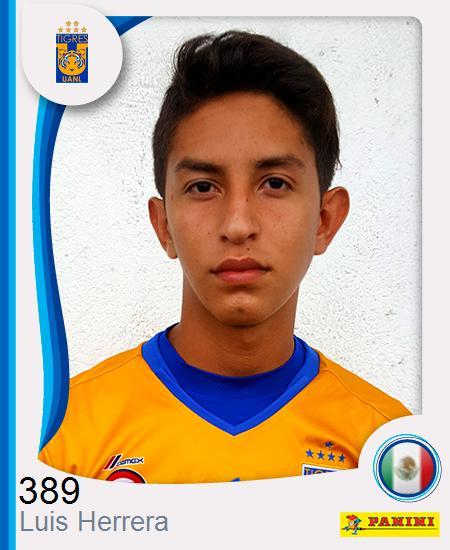 Luis Fernando Herrera Carrillo