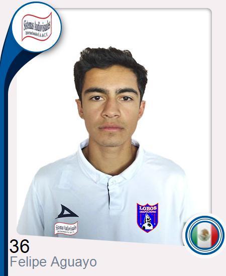 Felipe Aguayo Robledo