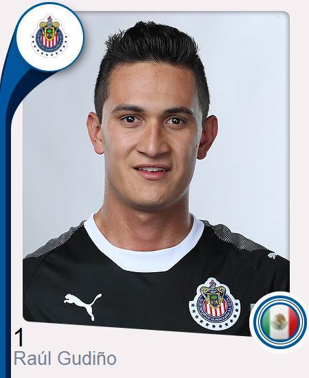 Raúl Manolo Gudiño Vega