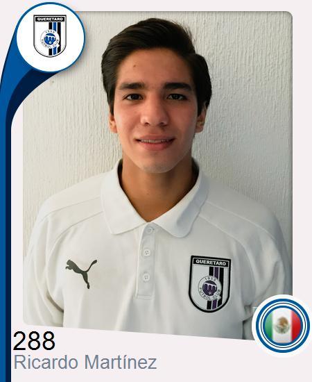 Ricardo Martínez Laborde