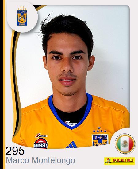 Marco Antonio Montelongo Rosas