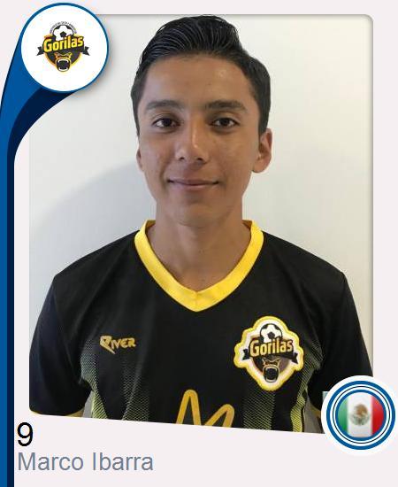 Marco Antonio Ibarra Vázquez