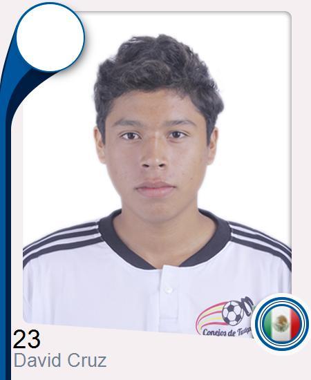 David Emmanuel Cruz Ruiz