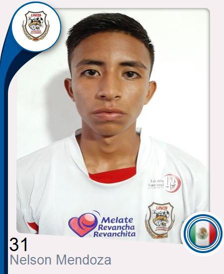 Nelson De Jesus Mendoza Alpirez