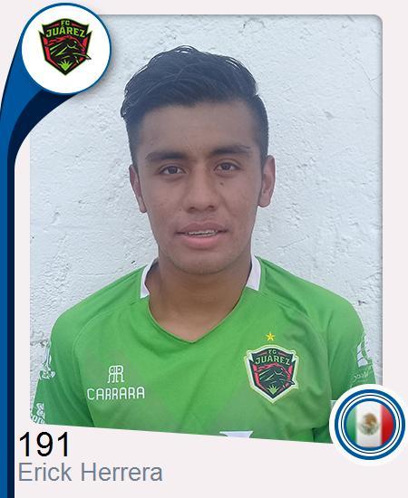 Erick Omar Herrera Hernández