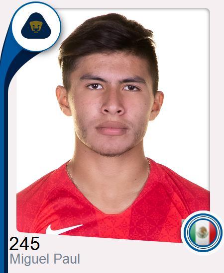 Miguel Ángel Paul Hernández
