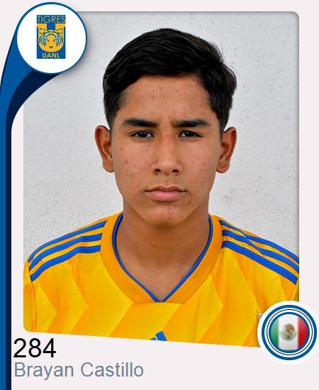 Brayan Jair Castillo González