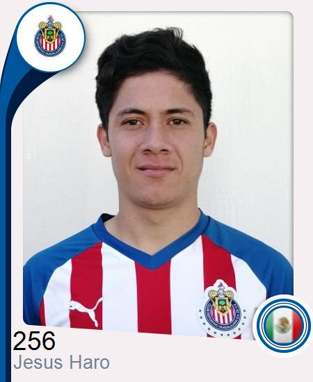 Jesús Adrián Haro Soto