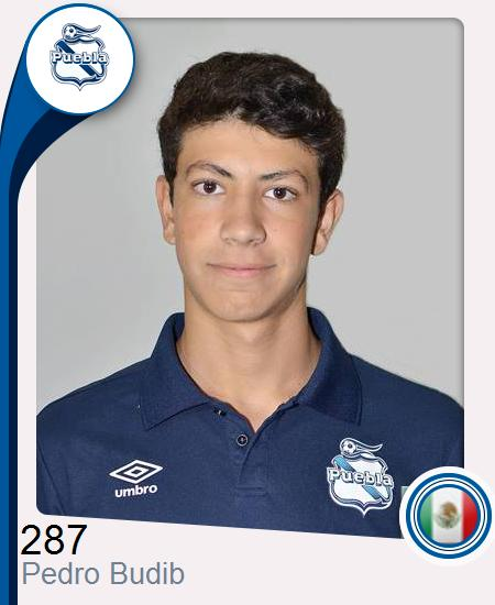 Pedro Budib